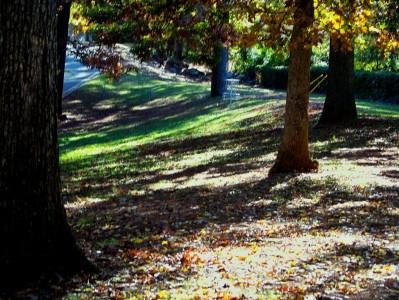 Perkerson Park, Main course, Hole 5 Short approach