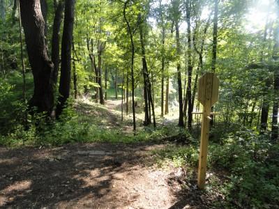 Portage Lakes DGC, Main course, Hole 14 Long tee pad