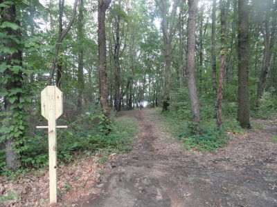 Portage Lakes DGC, Main course, Hole 12 Long tee pad