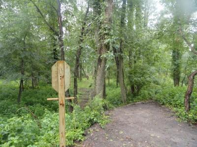Portage Lakes DGC, Main course, Hole 15 Long tee pad