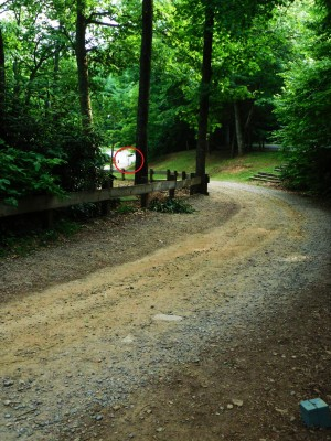Camp Rockmont for Boys, Camp Rockmont Disc Golf Course , Hole 18 Tee pad