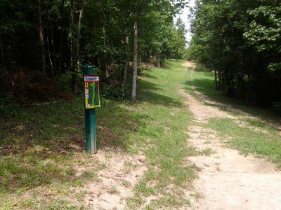 Creekside Park, Creekside Park Disc golf, Hole 8 Long tee pad