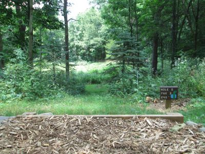 Oller's Acres, Oller's Acres, Hole 8 Tee pad