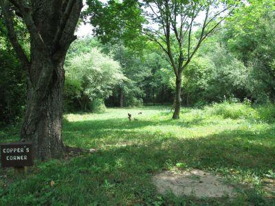 Oller's Acres, Oller's Acres, Hole 12 Long approach