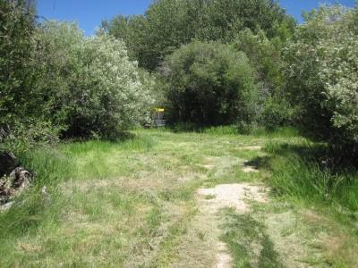 Art Kelly Park, Soda Springs DGC, Hole 7 Short approach