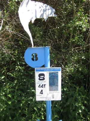 Art Kelly Park, Soda Springs DGC, Hole 8 Long tee pad