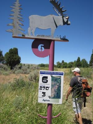 Art Kelly Park, Soda Springs DGC, Hole 6 Long tee pad