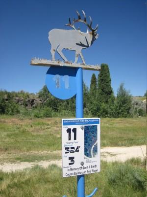 Art Kelly Park, Soda Springs DGC, Hole 11 Long tee pad