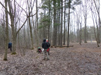 Punderson State Park, Friends of Punderson DGC, Hole 14 Midrange approach