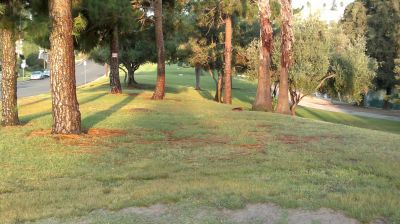 La Mirada Regional Park, Main course, Hole 13 Tee pad
