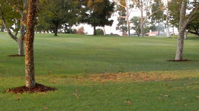 La Mirada Regional Park, Main course, Hole 5 Tee pad