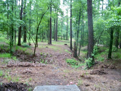 International Disc Golf Center, Jim Warner Memorial, Hole 9 Tee pad