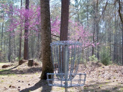 International Disc Golf Center, Jim Warner Memorial, Hole 11 Putt