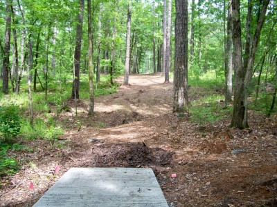 International Disc Golf Center, Jim Warner Memorial, Hole 4 Tee pad