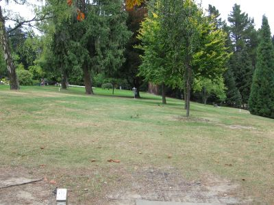 Queenstown Gardens, Main course, Hole 6 Tee pad
