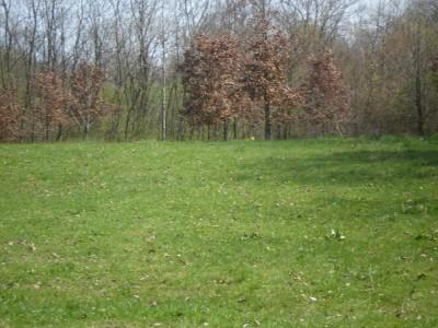 Boettler Park, Boettler park, Hole 4 Tee pad