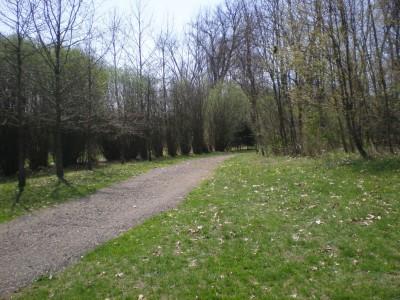 Boettler Park, Boettler park, Hole 1 Tee pad