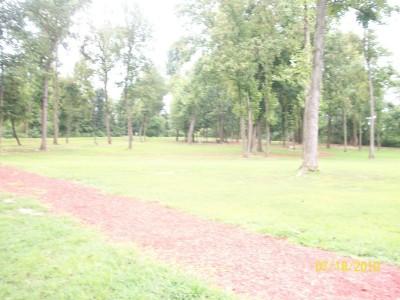 War Memorial Park, Main course, Hole 10 Midrange approach