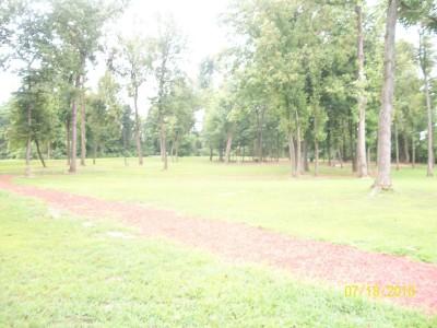 War Memorial Park, Main course, Hole 10 Long approach