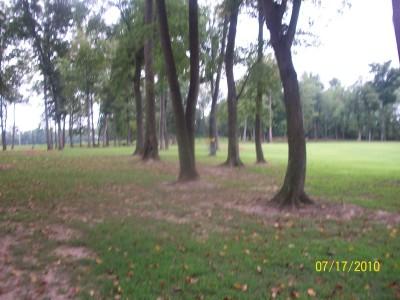War Memorial Park, Main course, Hole 7 Short approach