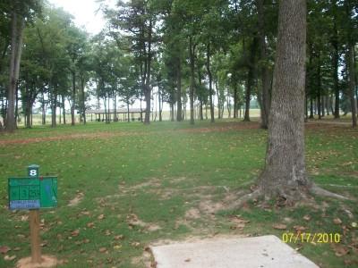 War Memorial Park, Main course, Hole 8 Tee pad
