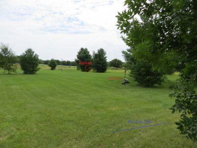 Phantom Lake YMCA Camp, Main course, Hole 1 Long tee pad
