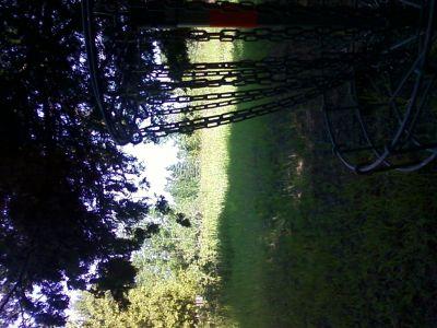 Lumberjack Meadows DGC, Main course, Hole 13 Reverse (back up the fairway)