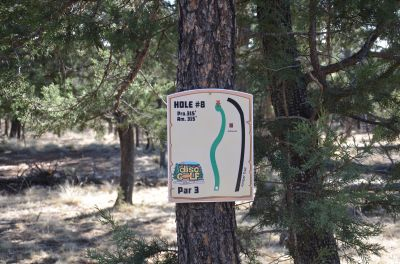 Camp of The Tall Pines, Main course, Hole 8 Hole sign