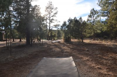 Camp of The Tall Pines, Main course, Hole 16 Tee pad