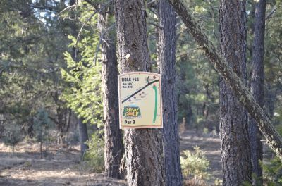 Camp of The Tall Pines, Main course, Hole 18 Tee pad