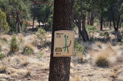 Camp of The Tall Pines, Main course, Hole 7 Hole sign