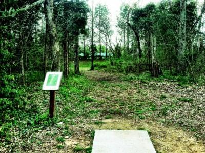 Mundy Park, Main course, Hole 4 Tee pad