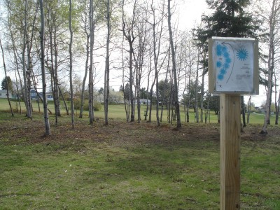 Al Quaal Recreation Area, Main course, Hole 6 Tee pad