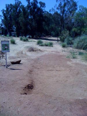 Kit Carson Park, Main course, Hole 2 Tee pad