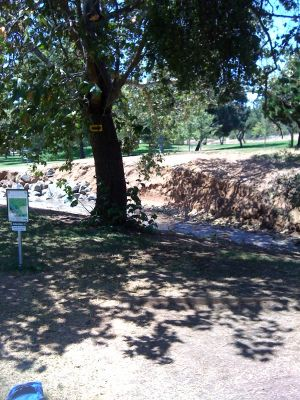 Kit Carson Park, Main course, Hole 10 Tee pad