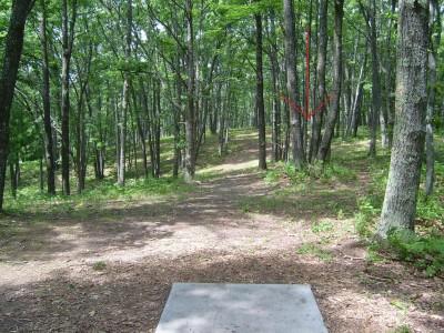 Hanson Hills Recreation Area, Grayling Rotary DGC, Hole 7 Tee pad