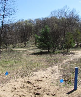 Hanson Hills Recreation Area, Grayling Rotary DGC, Hole 15 Tee pad