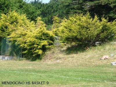 Mendocino High School, Main course, Hole 9 Putt
