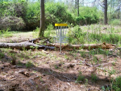 Mathews Park, Main course, Hole 12 Putt
