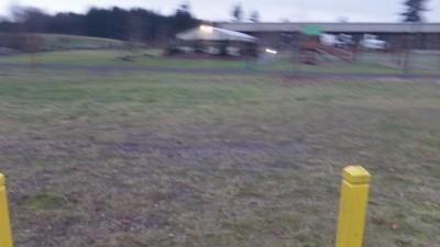 Twin Cedars DGC, Main course, Hole 9 Midrange approach