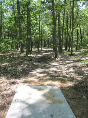 Udell Rollways, Main course, Hole 11 Long tee pad