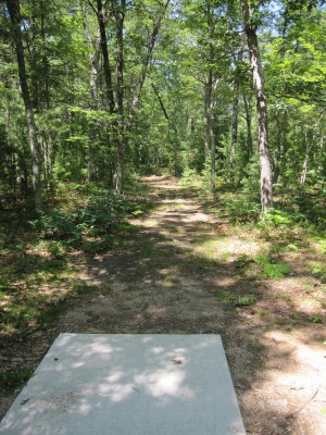 Udell Rollways, Main course, Hole 18 Long tee pad