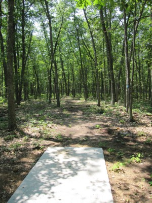 Udell Rollways, Main course, Hole 6 Long tee pad