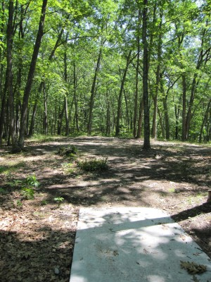 Udell Rollways, Main course, Hole 12 Long tee pad