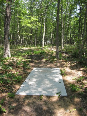 Udell Rollways, Main course, Hole 9 Long tee pad