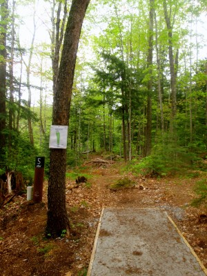 Base Camp Disc Golf, Main course, Hole 5 Tee pad