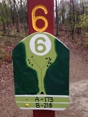 Fox River County Park, Grey Fox, Hole 6 Tee pad
