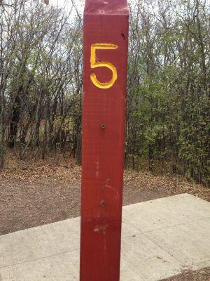 Fox River County Park, Grey Fox, Hole 5 Tee pad