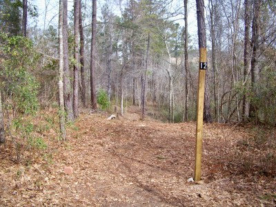 Myrtle Ridge, Main course, Hole 12 Tee pad