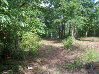Myrtle Ridge, Main course, Hole 8 Midrange approach
